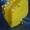 Ремонт КПП SB-165 на погрузчик Сталева Воля Л-34 (Stalowa Wola L-34)  #331980