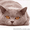 Британский кот приглашает на вязку вислоушек #376392