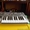 Novation X-Station25(midi-keyboard+synthesizer+audio interface)3500грн #1047921