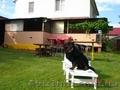 Отдых на уютной даче в деревне Студенок  и 2 ком.квартира в центре   - Изображение #2, Объявление #299530