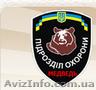 Охранные услуги Медведь