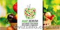 Оптовая продажа овощей и фруктов отечественного производства в городе Донецке и