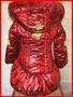 Продаю красивое и стильное зимнее пальто на девочку! - Изображение #2, Объявление #1178841
