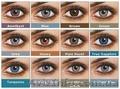 Freshlook Dimensions — линзы, которые позволяют вам изменить свой обра - Изображение #3, Объявление #1027620