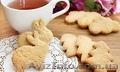 Линия производства сахарного печенья на сетку печи