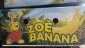 производитель бананов Эквадор, Объявление #481445